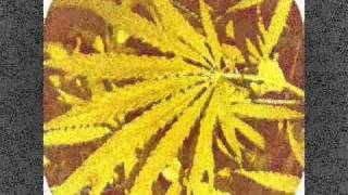Mellow Yellow & Young Ranks - Herpes Take Over LP - Jam Rock Record...