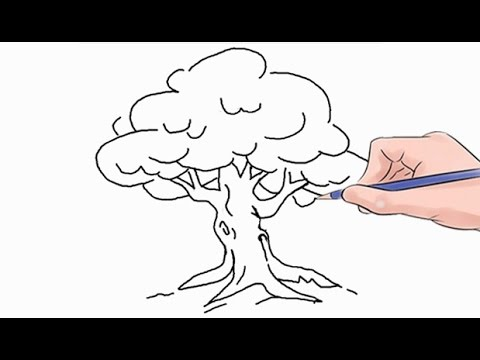 how to draw a tree easy step by step youtube