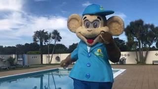 Monkey Tree Holiday Park 2019