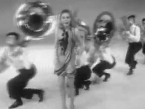 Conny Vink - De Toeteraar  (1969 Live)