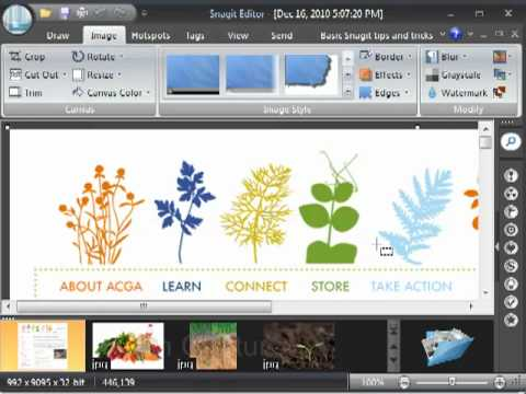 Snagit 9 How to Use Scrolling Webpage Capture