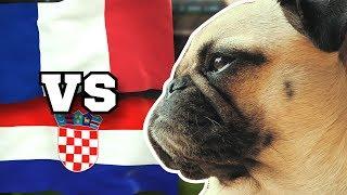 FRANKREICH gegen KROATIEN 🇫🇷⚽️🇭🇷 FUSSBALL ORAKEL FRIEDA » FINALE WM 2018 Highlight FRA CRO