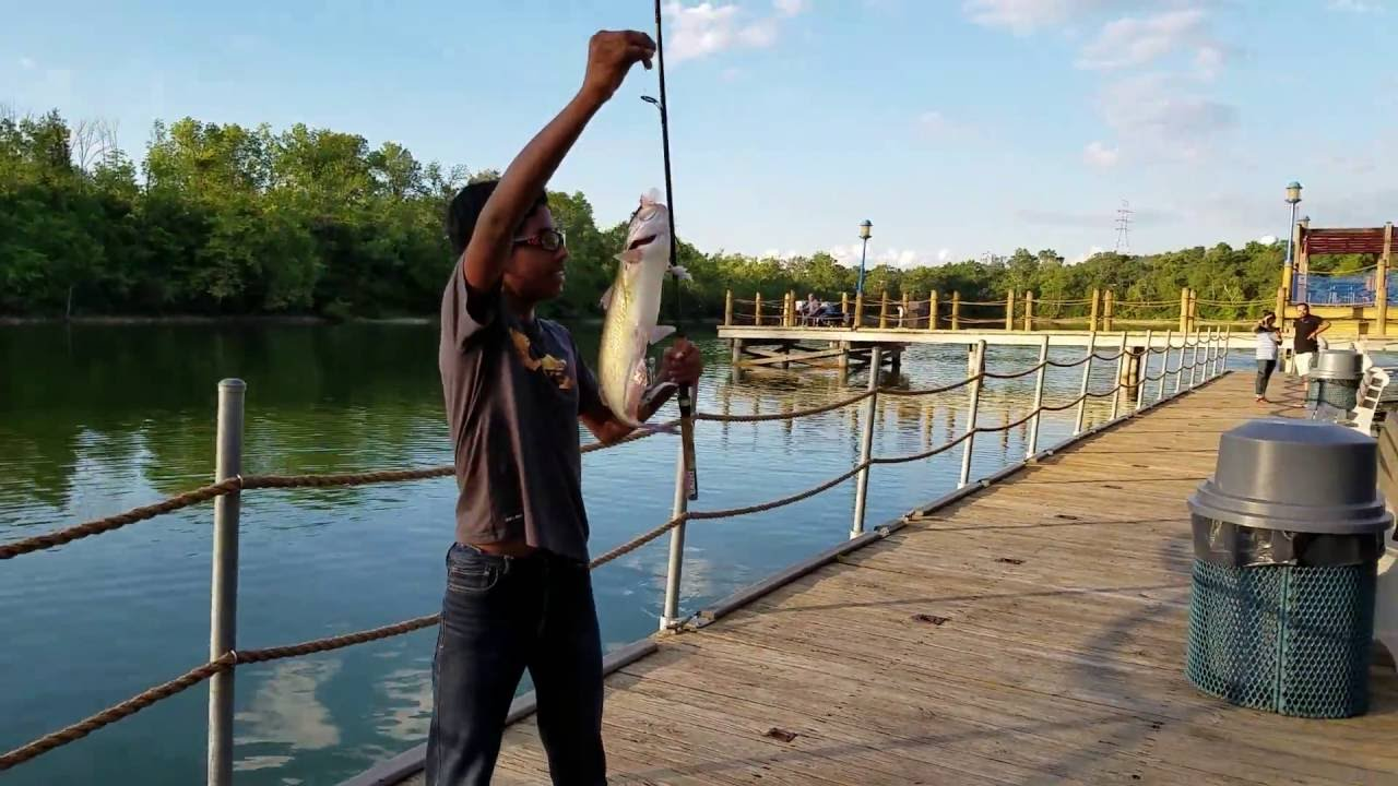 20 inch cat fish caught in 2 mins by rohan lake isabella for Fishing in cincinnati