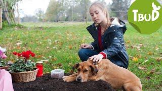 Hundetränen (Folge 81) | Tiere bis unters Dach | SWR Kindernetz
