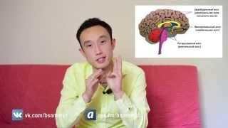 [СПЕЦВЫПУСК] Программирование ума (Часть 1)