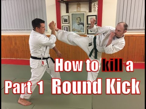 How to Kill a Round Kick -Part 1