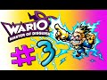 Wario: Master of Disguise Episode 3: A night at the Smithsnorian.