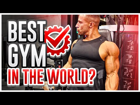 Is This The Best Gym In The World? | Abu Dhabi Road Trip