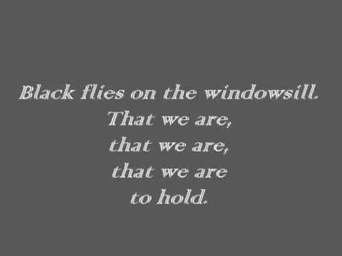Ben Howard - Black Flies [Lyrics]