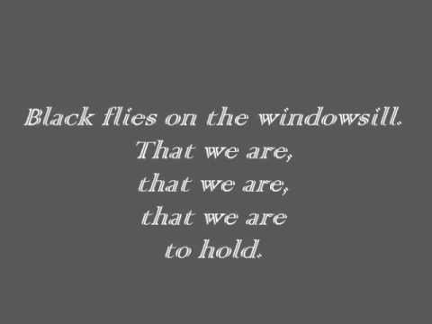 Ben Howard - Black Flies [Lyrics]