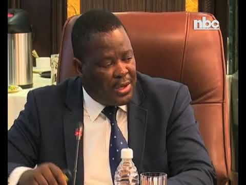 City of Windhoek suspends CEO Robert Kahimise - NBC