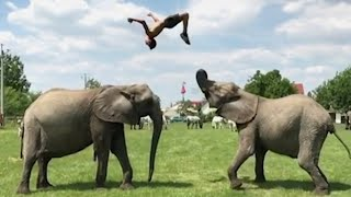 Man Performs Amazing Flips On Elephants: 'They Are Like My Brothers and Sisters'