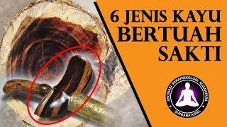 6 Jenis Kayu Bertuah Paling Ampuh Dipercaya Sangat Sakral di Indonesia