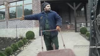 видео Что нужно для создания гравийного сада