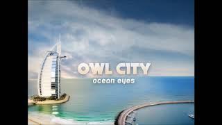 Owl City Fireflies Vocals Only.mp3