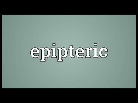 Epipteric Meaning