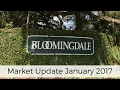 Bloomingdale Valrico Florida Market Update 2017 The NOW Team Real Estate Agents REMAX