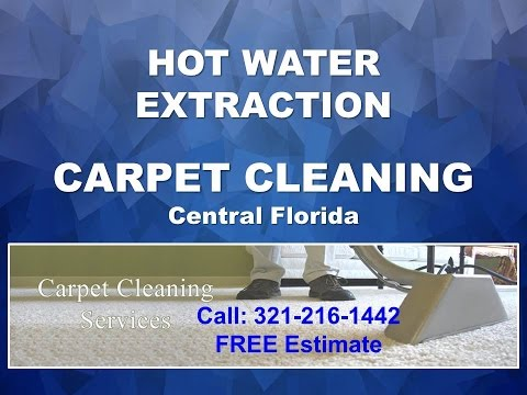 Affordable Carpet Cleaners in Apopka FL 321-216-1442