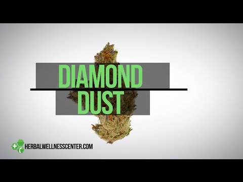 Diamond Dust strain review