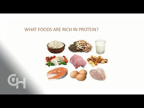 effect-of-protein-on-blood-sugars