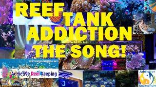 Reef Tank Addiction Song!!! (addictive Reef Keeping Version)
