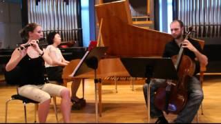 J. Haydn / Trio G-Dur (Hob. XV:15)