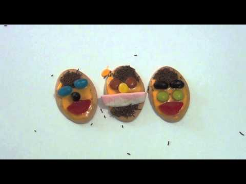 How To Make Funny Face Biscuits