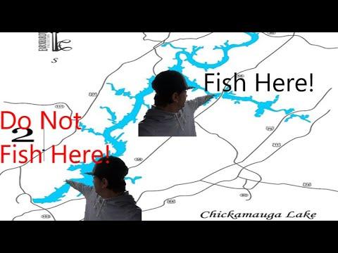The Problem With Lake Chickamauga Bass Fishing