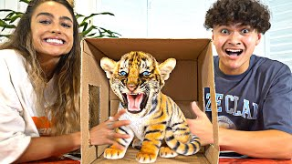 Download What's In The Box Challenge with Sommer Ray Mp3 and Videos
