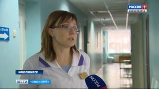 Прививка или страховка? Новосибирцы выбирают способы защиты от укусов клещей