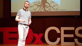 Un arbre pour innover   Anthony Gonnet   TEDxCESI