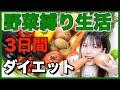 【検証】3日間野菜だけ食べたら何キロ痩せる?【縛り生活】ダイエット