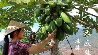 Download Video 木瓜成熟后是水果,生的时候可做菜,凉拌木瓜丝你吃过吗?【滇西小哥】 MP3 3GP MP4
