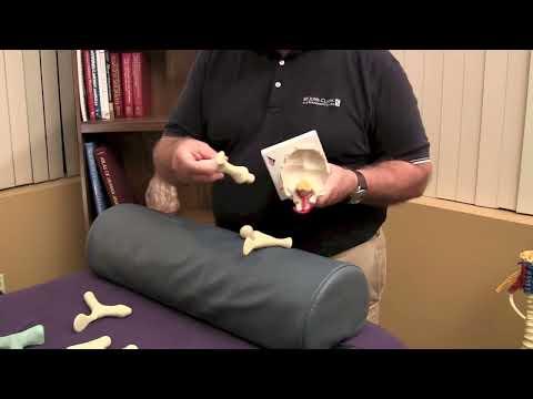 Paul St. John reviews massage tools,  Paul StJohn reviews massage tools