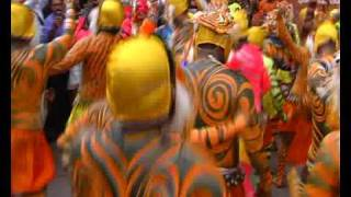 Tiger Dance, Pulikali Trichur