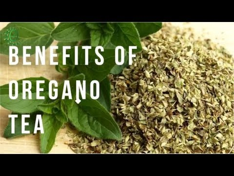 6 Amazing Benefits Of Oregano Tea For Weight Loss And More | Organic Facts