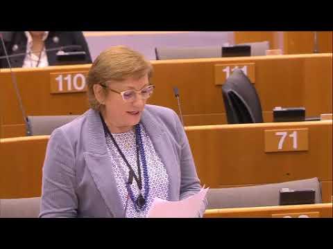 Iskra Mihaylova 30 Jan 2020 plenary speech on Commission Work Programme 2020