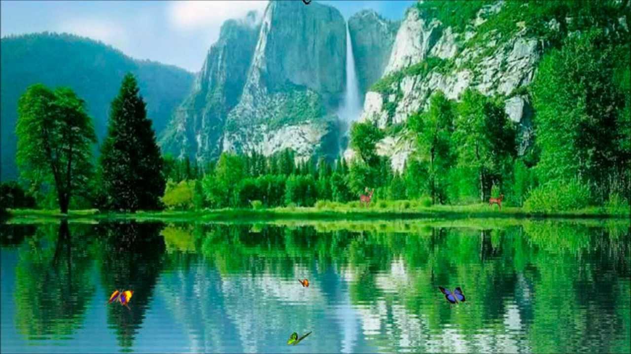 Musique Relaxante | Pied chute d'eau | Yoga | Méditation ...