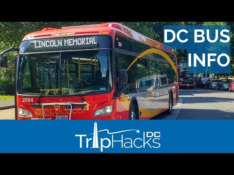 Hop On Hop Off Tours Vs. Public Buses in Washington DC