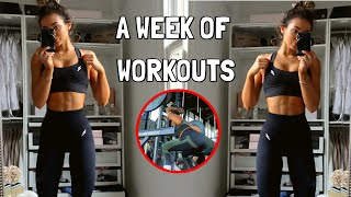 A FULL WEEK OF WORKOUTS *my workout routine*