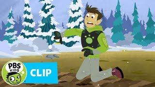 Wild Kratts: Chickadee Challenge thumbnail
