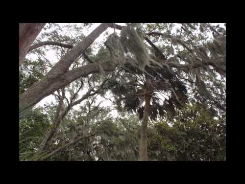 TIMUCUAN ECOLOGICAL AND HISTORIC PRESERVE VISITORS CENTER VIDEO BY ASAP PLUMBING  904-346-1266