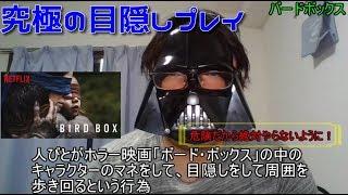 【ネットフリックスレビュー】バードボックス(BIRD BOX)「あの元ネタ。究極の目隠しプレイチャレンジは危険だぜ」