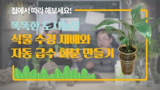 [만들어요 과학관] 똑똑한 도시 농부, 식물 수경 재배…