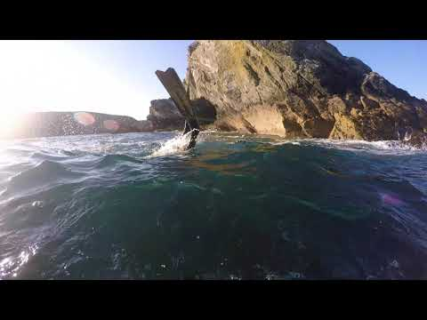 Spearfishing UK- Island Sessions Part 1 Ep 5, Cornwall Pollock