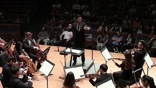 Brahms Symphony No. 1, 1st Movement