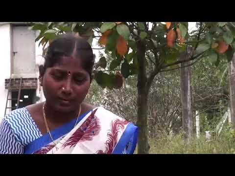Eco Femme: A Women's Empowerment Project in Rural India