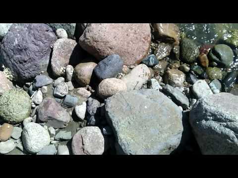 11 Рассматриваю речные камни на речке 1
