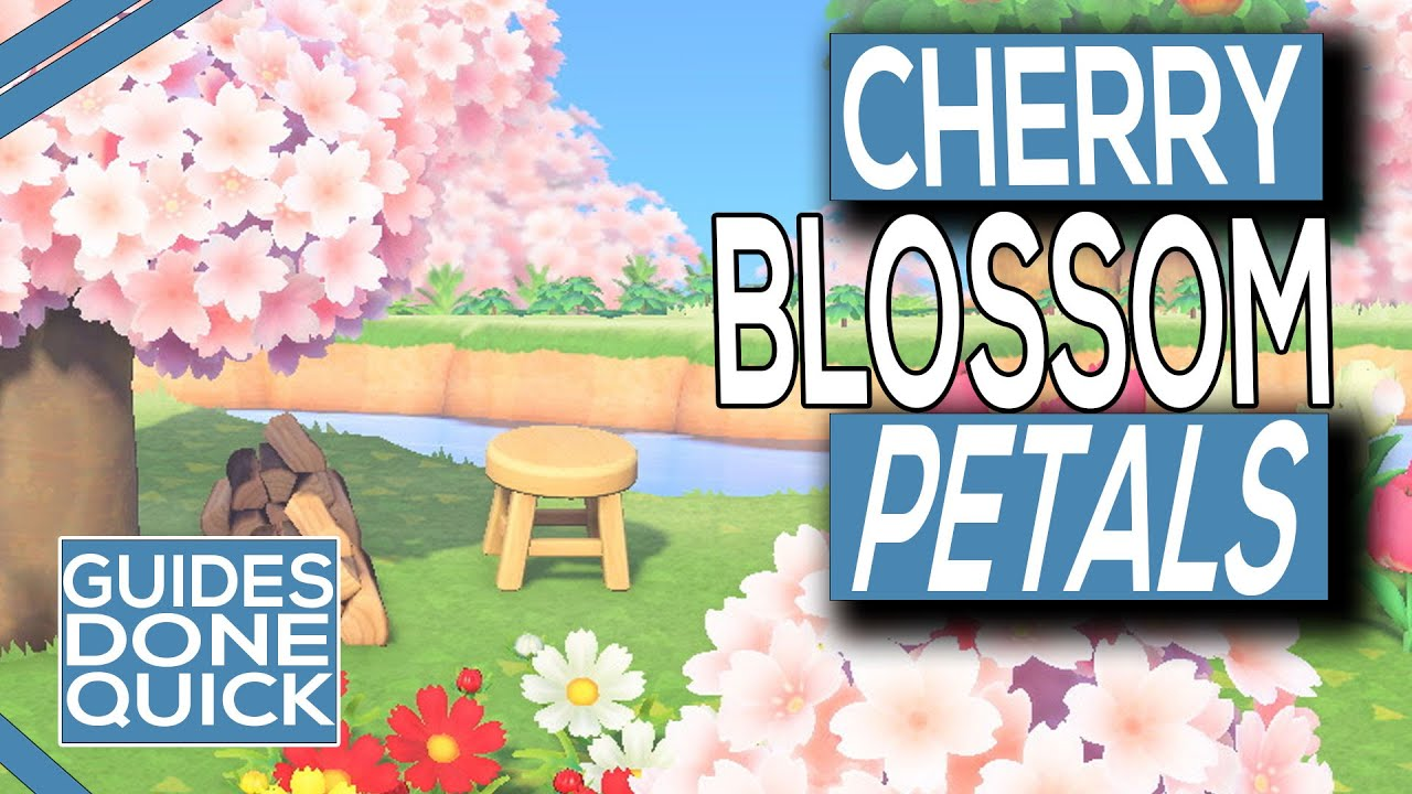How To Get Cherry Blossom Petals In Animal Crossing New Horizons Youtube