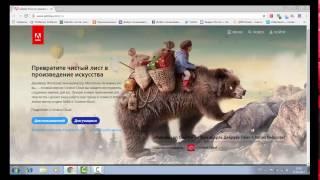 Скачать и установить Adobe Flash Player для всех браузеров
